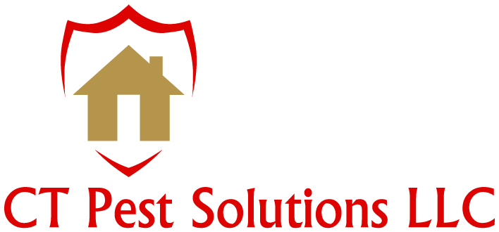 CT Pest Solutions